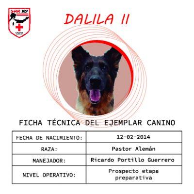 DALILA II