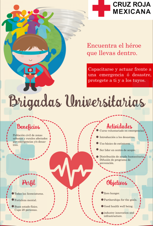 brigadas-universitarias